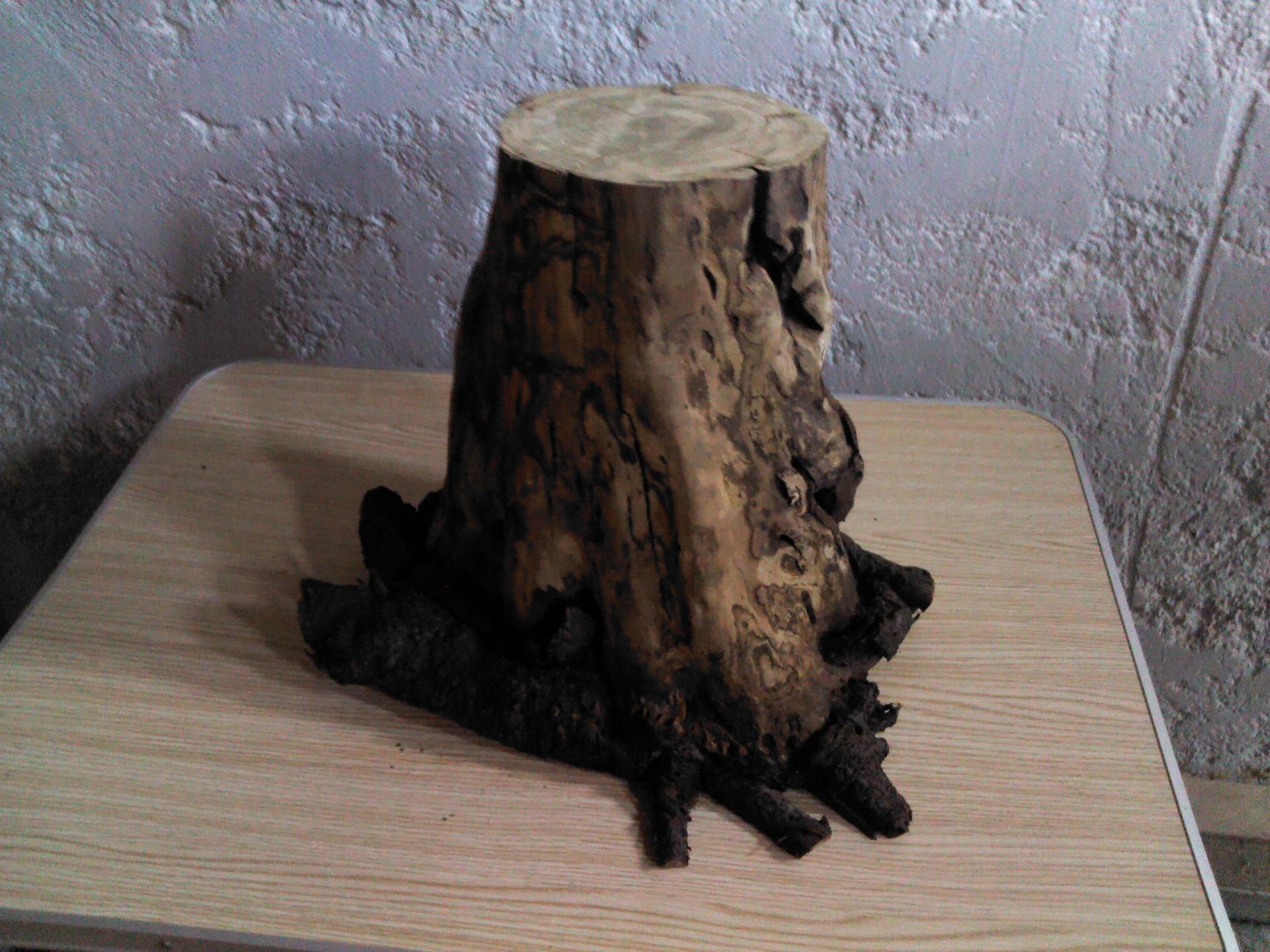 Passion Bois dedans ma passion du bois